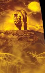 Christina_Dodd_Into_the_Flame