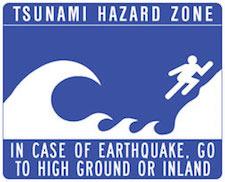 Christina_Dodd_Tsunami_Warning